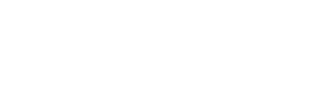 Asset 6wise